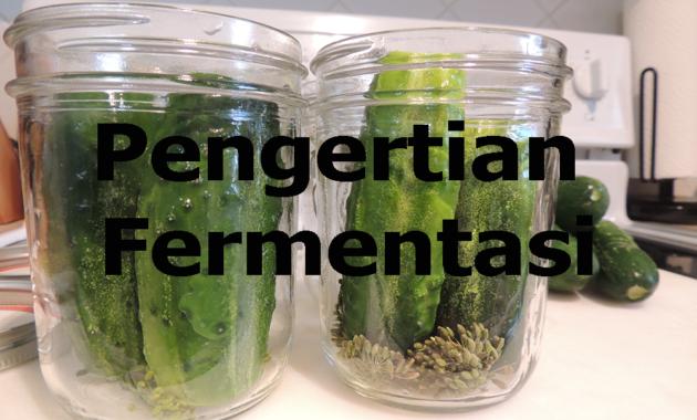 Pengertian fermentasi