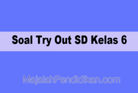 Soal Try Out SD Kelas 6