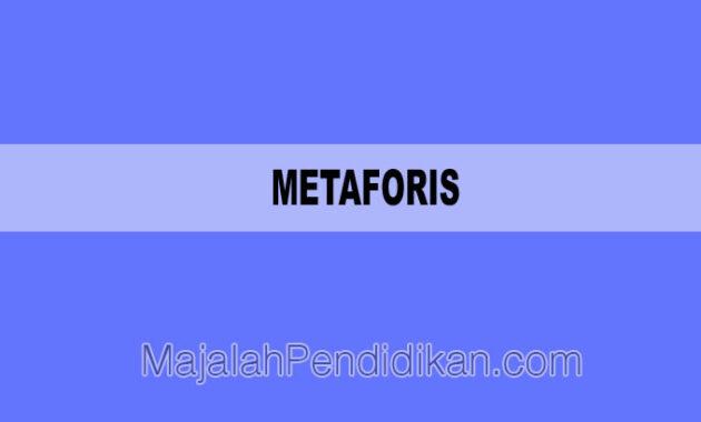 Metaforis
