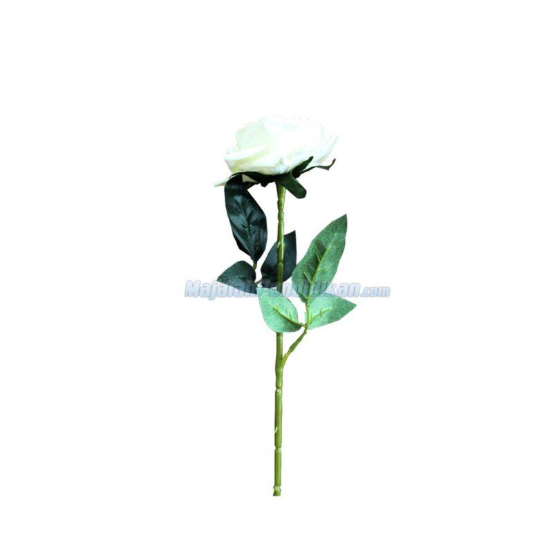 Tangkai-Bunga